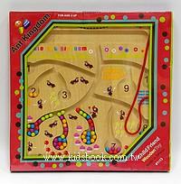螞蟻王國磁棒迷宮