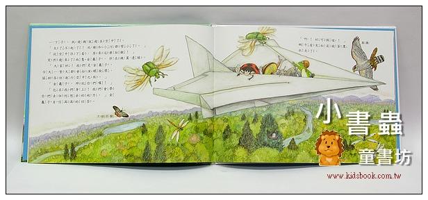 內頁放大:雨蛙自然觀察團:森林空中散步(79折)