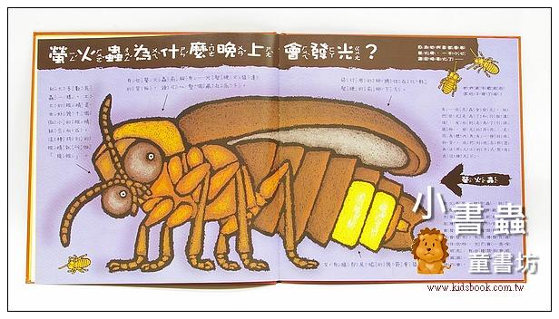 內頁放大:蟲蟲為什麼? (85折)