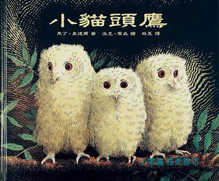 小貓頭鷹(79折)