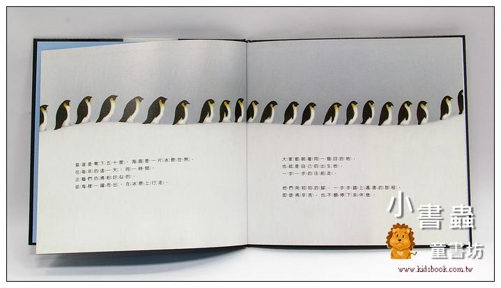 內頁放大:站在爸爸的腳上─皇帝企鵝的故事  (79折)