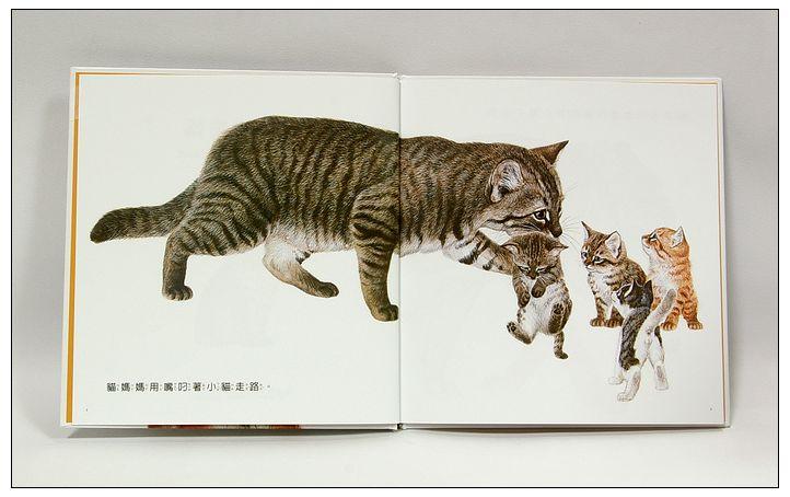 內頁放大:動物的媽媽