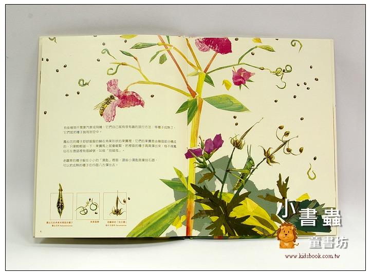 內頁放大:一顆種子的旅行<親近植物繪本>
