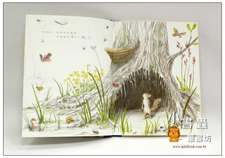 內頁放大:松鼠先生知道幸福的祕訣(79折)