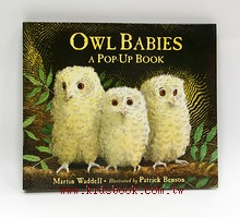Owl Babies: A Pop-Up Book(小貓頭鷹立體書)