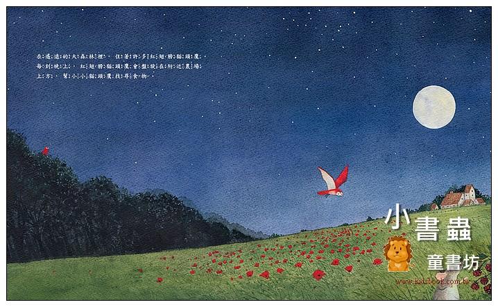 內頁放大:紅翅膀貓頭鷹 (79折)