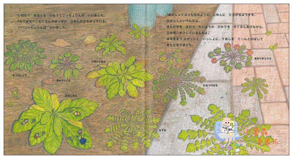內頁放大:厘厘蟲繪本4:厘厘蟲─冬天團圓的路(日文) (附中文翻譯)<親近植物繪本>