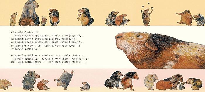 內頁放大:世界最優天竺鼠(79折)