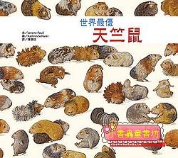 世界最優天竺鼠(79折)