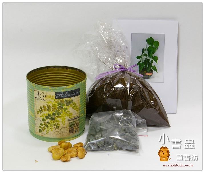 內頁放大:愛心樹(水黃皮)種子材料包+手工彩繪馬口鐵罐(綠)