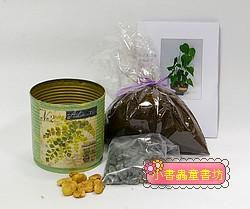 愛心樹(水黃皮)種子材料包+手工彩繪馬口鐵罐(綠)
